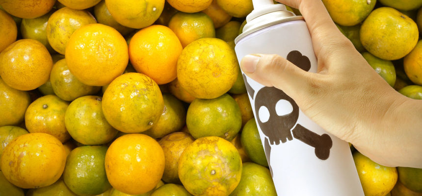 Os agrotóxicos e a sua saúde