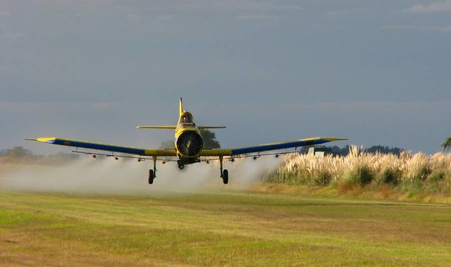 Governo Bolsonaro libera uso de mais 31 agrotóxicos