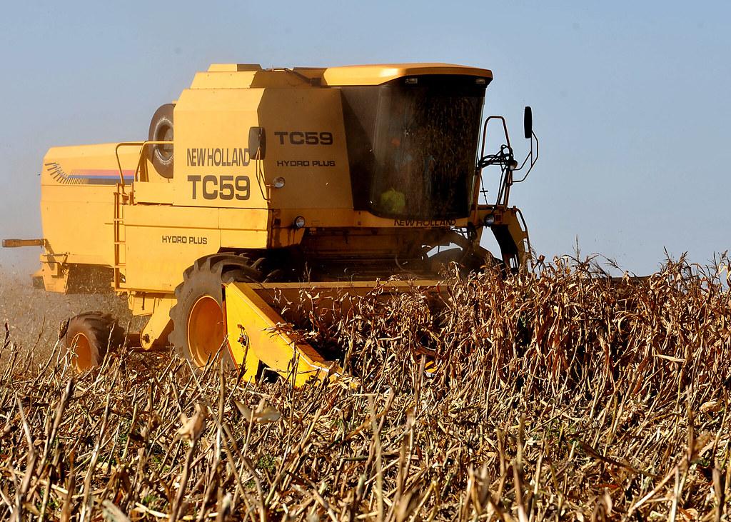 Raio X: onde estão os 3,9 milhões de hectares sob controle estrangeiro no Brasil