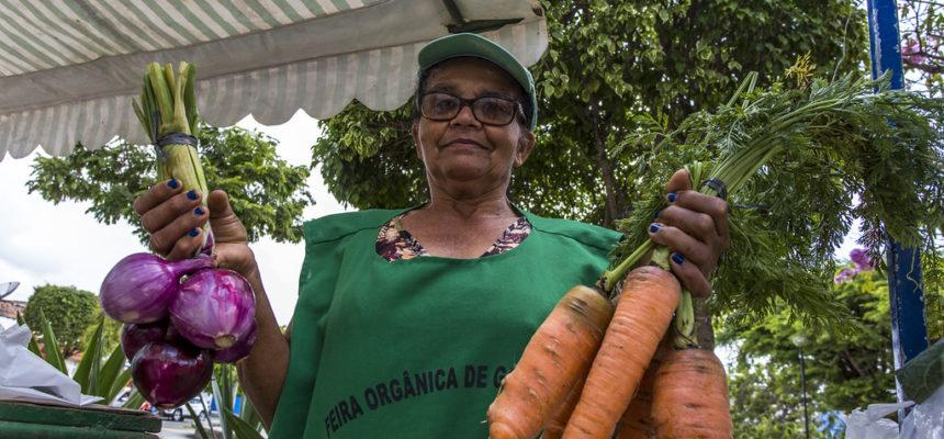 Sistemas agroecológicos são mais sustentáveis, afirma pesquisa