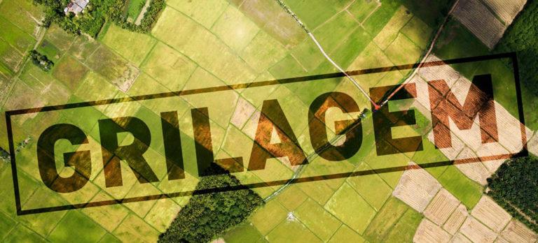 Nota sobre projeto de lei que pretende regularizar terras griladas no Pará