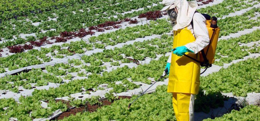 Governo libera mais 42 agrotóxicos, chegando a um total de 239 em 2019
