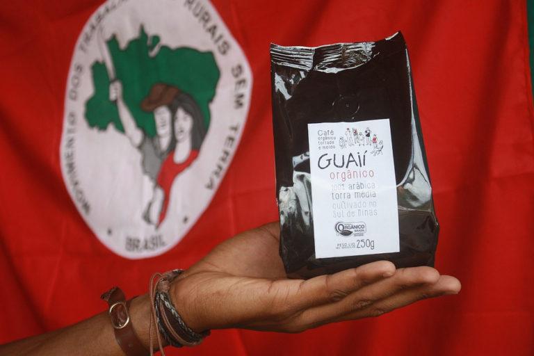 Guaií: A semente boa que chega às suas mãos pela Cooperativa Camponesa