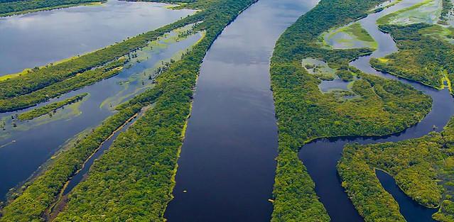 Organizações eclesiais lançam campanha de sensibilização e cuidado com a Amazônia