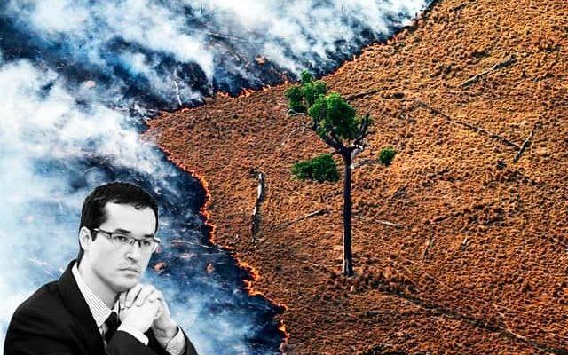 Desmatamento, disputa por terras, desapropriação ilegal: os latifúndios dos Dallagnol na Amazônia