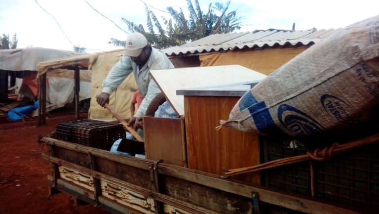 300 famílias do acampamento Quilombo dos Palmares sofrem despejo em Londrina (PR)