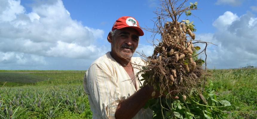 Saúde se conquista com luta e produção de alimentos saudáveis