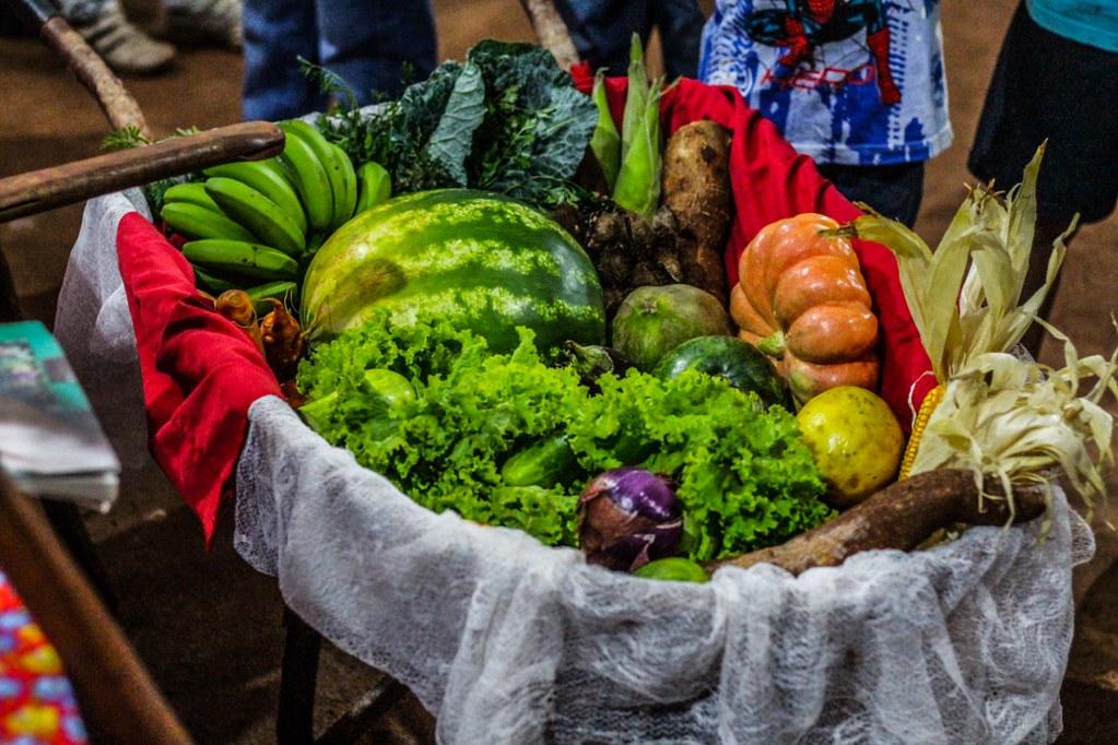 Feira da Jornada de Agroecologia vai reunir 100 grupos de produtores em Curitiba
