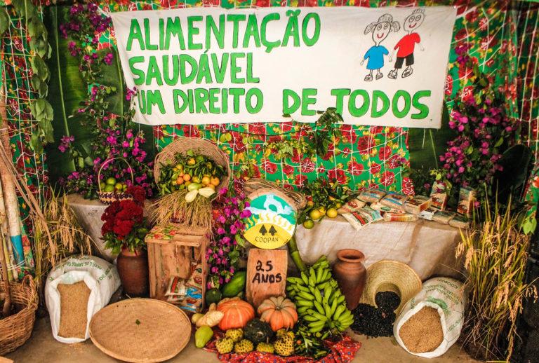 A terra não é mercadoria! Juventude Sem Terra e agroecologia