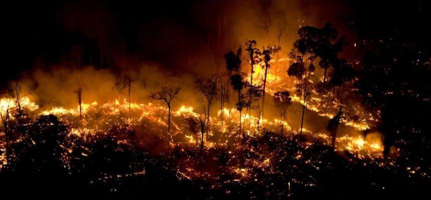 Queimar a Amazônia é crime contra a humanidade