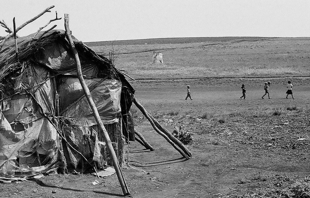 Fazenda Sarandi, em 1980.  Foto Ayrton Centeno.jpg
