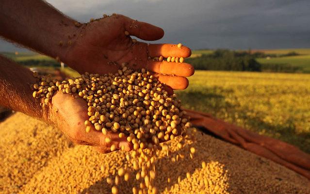 Em ofício, CNA e ruralistas atacam liberação de agrotóxico que mata lavouras