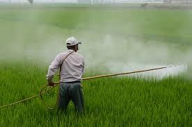 Agronegócio concentra as maiores taxas de suicídio entre trabalhadores