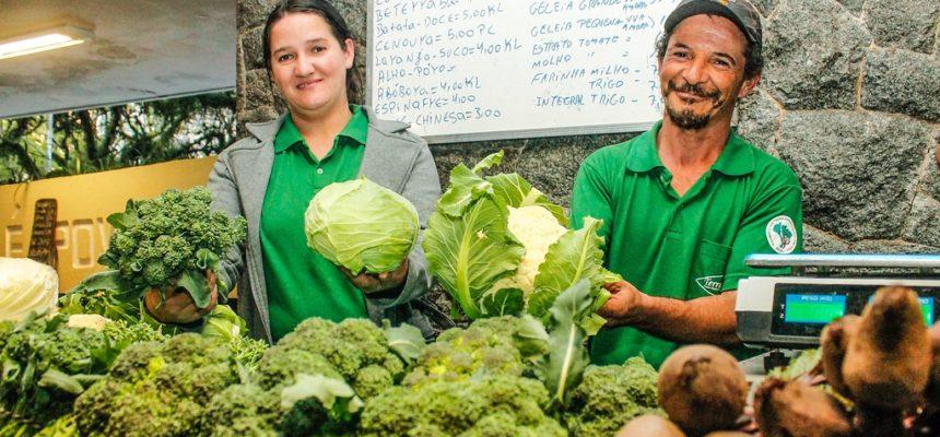 Porto Alegre realiza mais uma feira orgânica em setembro