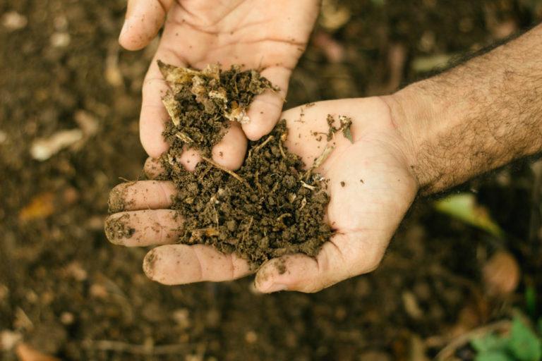 """""""Reforma Agrária é o grande programa ambiental"""""""