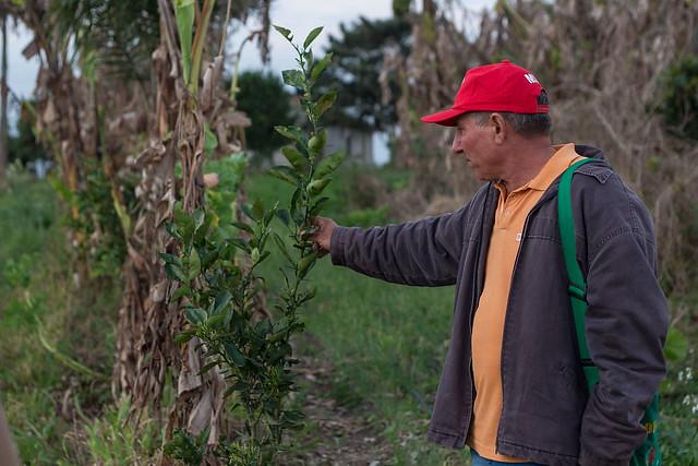 Filme sobre MST e agroecologia ganha prêmio da ONU