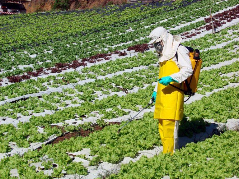 Como a Monsanto sabotou pesquisas sobre câncer