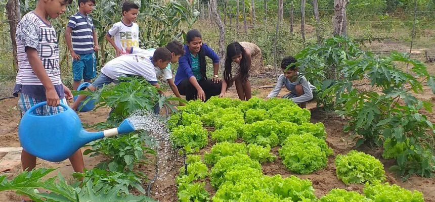 Na Bahia, acampamentos no Nilo Coelho sofrem ameaça de despejos