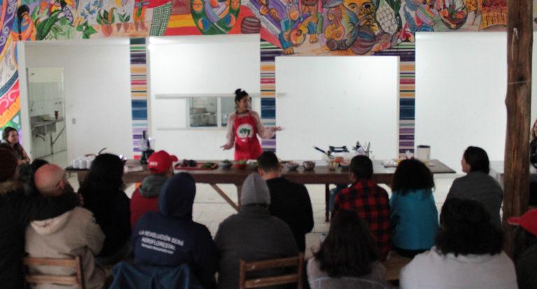 Escola Latinoamericana de Agroecologia sedia curso de sabores da agrofloresta