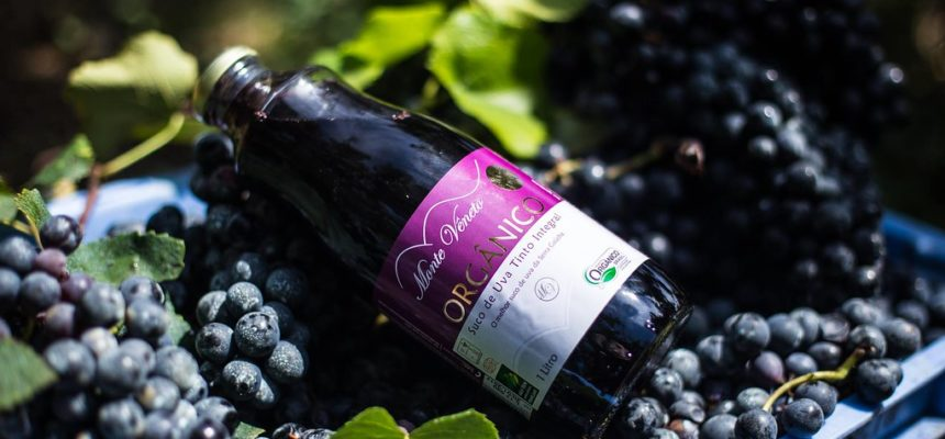 Suco de uva gaúcho conquista medalha de ouro em concurso da Wine South America
