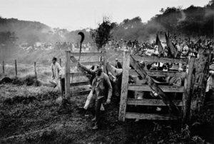 violência e destruição: a cara do projeto agrário do governo Bolsonaro