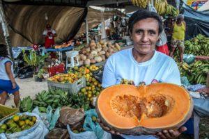 """""""A Reforma Agrária é determinante para a soberania alimentar"""""""