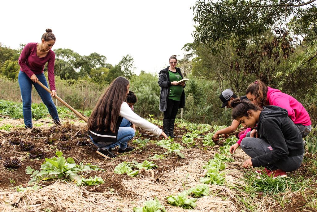 2018-06-26 - agroecologia na escola 25 de maio - assentamento vitoria da conquista - fraiburgo - sc - por juliana adriano (4).jpg