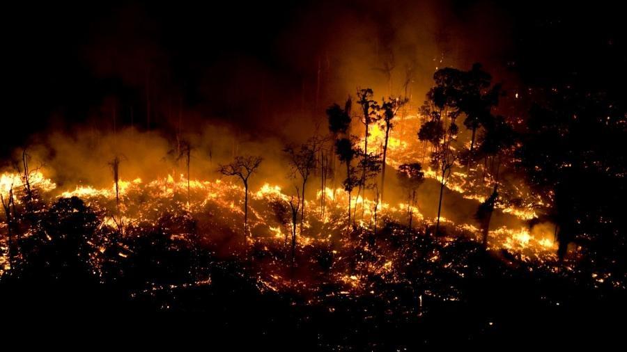 [126] Foco de incêndio na Floresta Amazônia em São Félix do Xingu, no Pará, registrado pelo Greenpeace.jpg