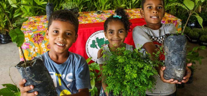 MST na Bahia lança Campanha de Reflorestamento no Extremo Sul do Estado