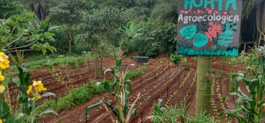Audiência de Conciliação ameaça famílias Sem Terra de despejo, na região metropolitana de BH