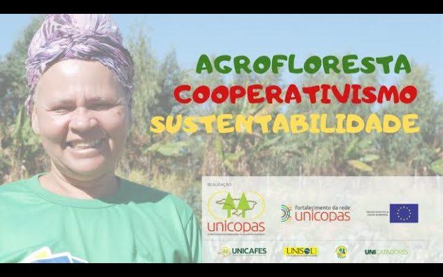 Agrofloresta é cooperativismo solidário