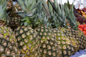 STF adia julgamento sobre inconstitucionalidade em isenção fiscal de agrotóxicos