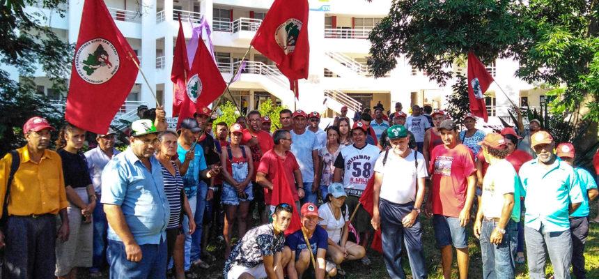 MST realiza plantio de árvores em Florianópolis