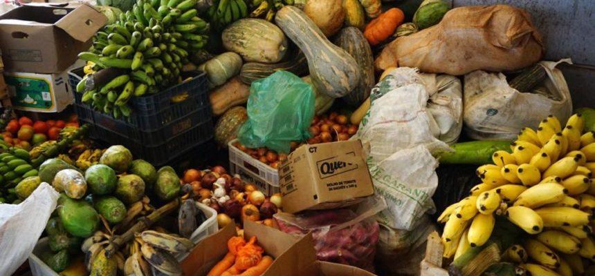 Alimentos tem cheiro e gosto de resistência no Encontro das Mulheres Sem Terra