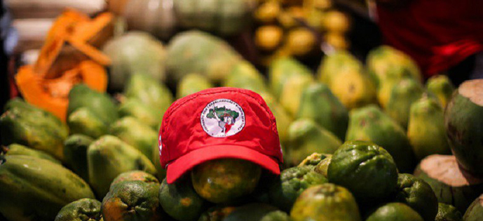 Entidades propõem medidas para garantir o direito à alimentação em tempos de Coronavírus