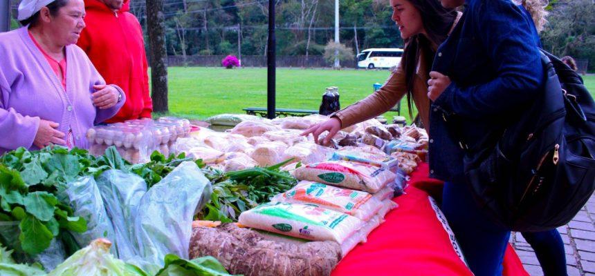 Agricultores familiares da região Metropolitana reabrem Feiras Ecológicas em Porto Alegre