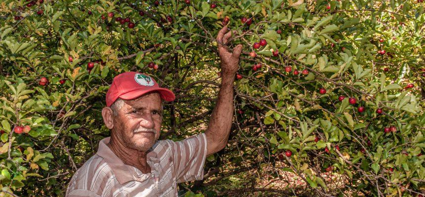 Documentário Pedro Xapuri: o homem que abraçava árvores