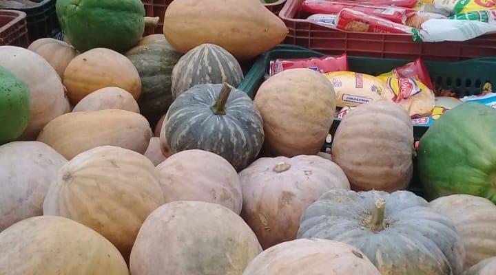 MST distribui cestas agroecológicas no Espírito Santo