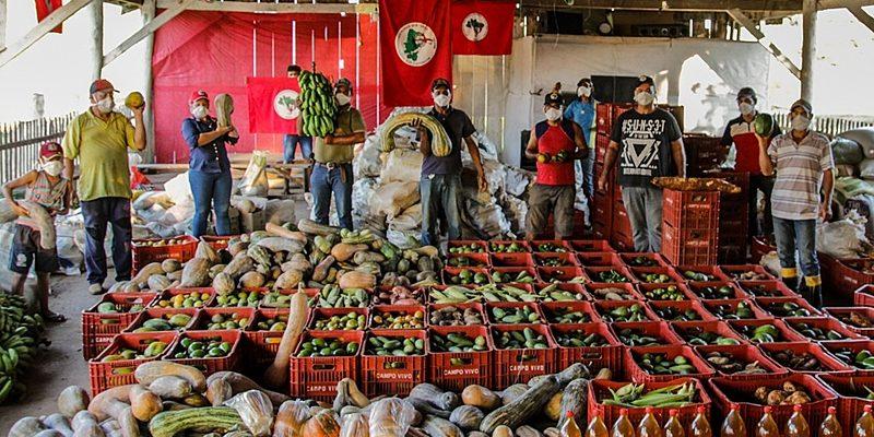 Acampamentos e assentamentos do MST doam 35 toneladas de alimentos no Paraná