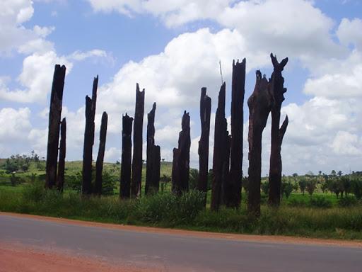 Solidariedade é símbolo de luta em memória do massacre de Eldorado dos Carajás