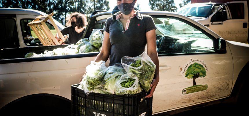 Centro de Desenvolvimento Sustentável doa 40 toneladas de alimentos no Paraná
