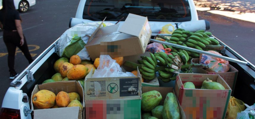 Santa Casa e Comitê da Unespar recebem doação de alimentos do MST em Campo Mourão-PR