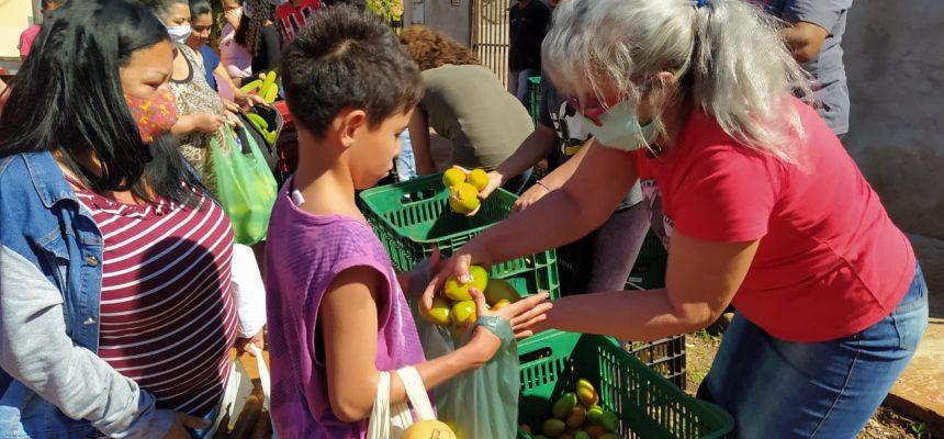 Assentamento em antiga fazenda improdutiva no Paraná doa 8 toneladas de alimentos
