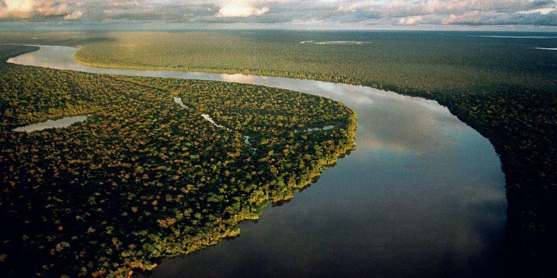 Crise ambiental no Brasil é marcada por avanço do desmatamento e conflitos no campo