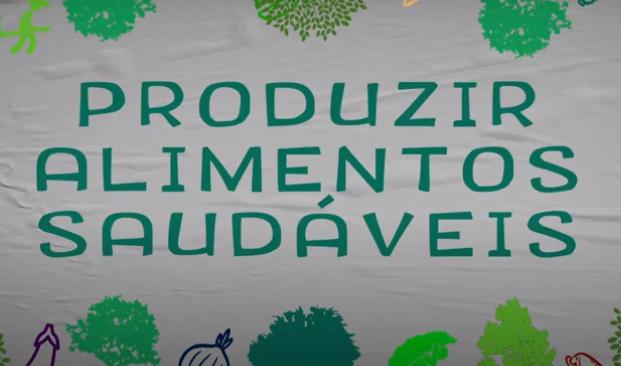 Coleta de Sementes: Plantar Árvores, Produzir Alimentos Saudáveis