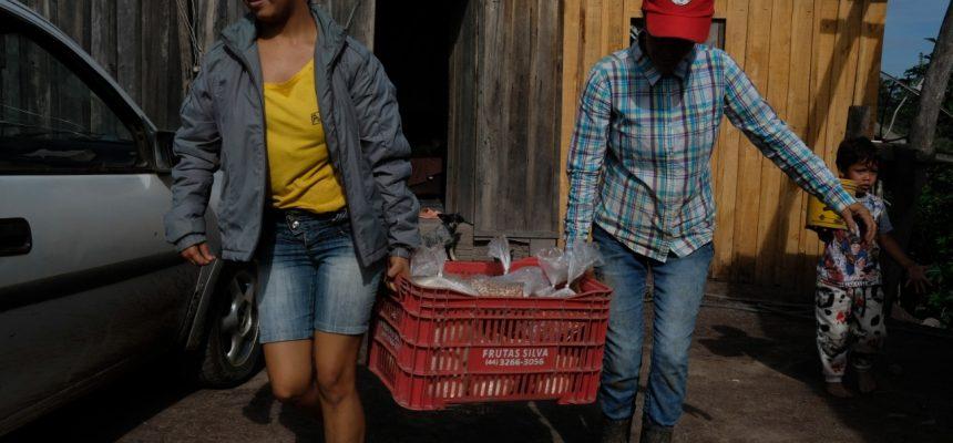 Artigo | Produzir alimentos saudáveis para o povo brasileiro