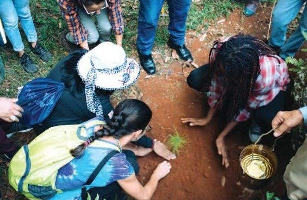 Organizações caribenhas e norte-americanas da Via Campesina mostram caminho para soberania alimentar