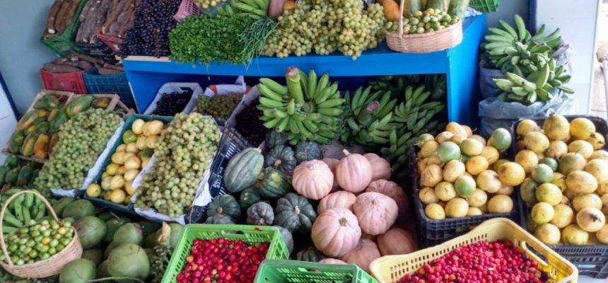 Em defesa do Guia Alimentar para a População Brasileira