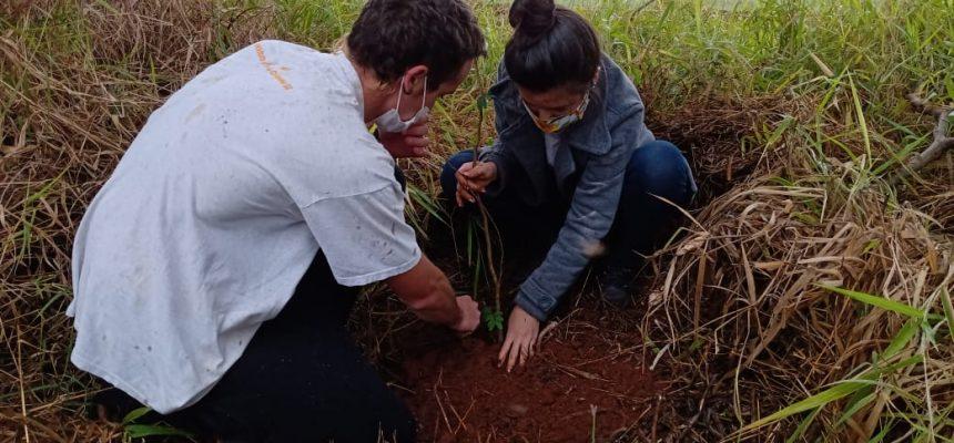 Juventude Sem Terra protagoniza cultivo e plantio de mudas no Dia Mundial do Meio Ambiente