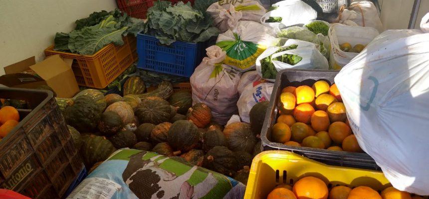 MST doa cerca de 3 toneladas de alimentos na região norte e metropolitana do RS